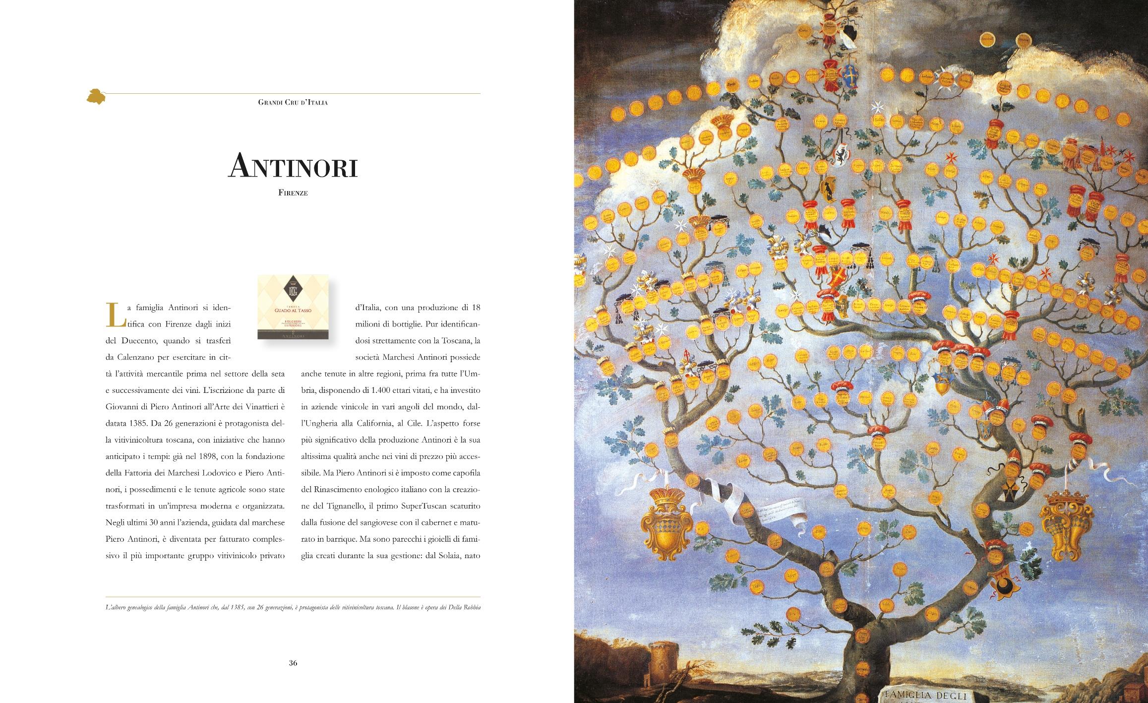 36-39 Antinori T.indd